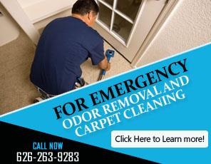Contact Us | 626-263-9283 | Carpet Cleaning Temple City, CA